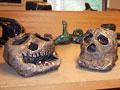 skulls_mini